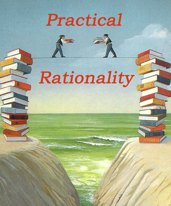 """the economic rationality assumption essay No longer subscribe to all the economic man and rational choice theory   friedman """"the rationality of positive economics"""" in essays on positive  economics."""