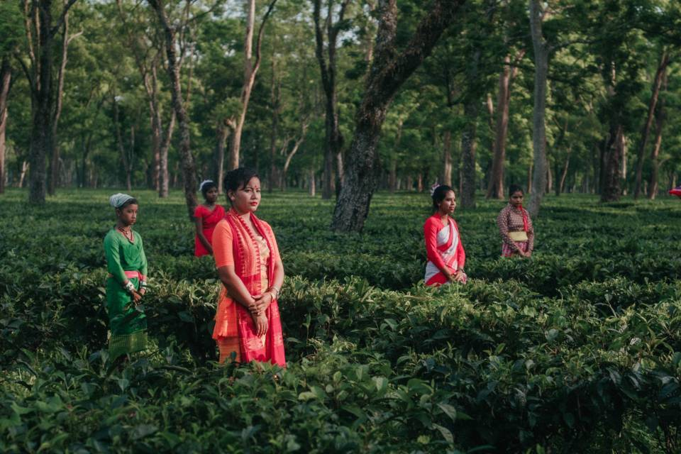 Assam's tea plantation workers: Why are they in the news?
